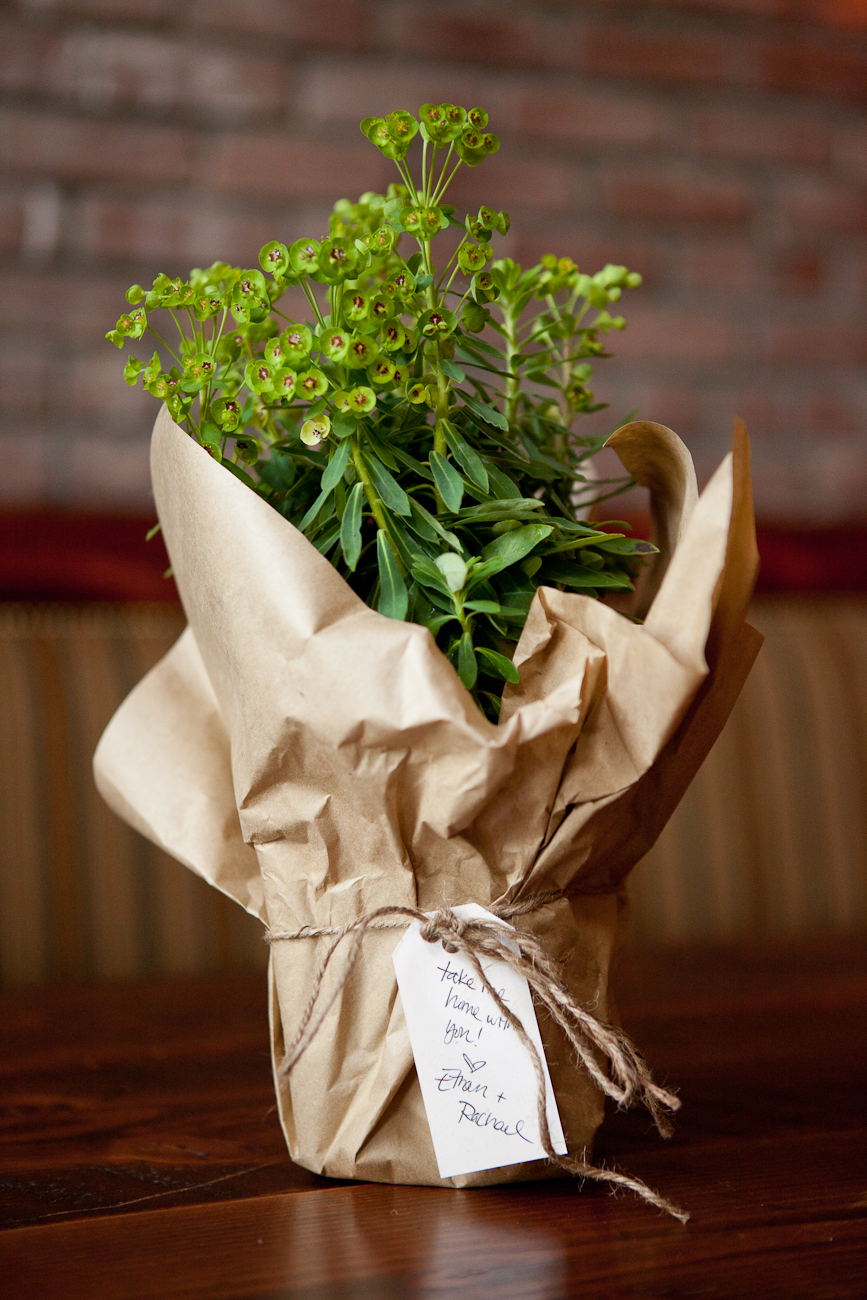 plants_with_kraft_paper_wedding